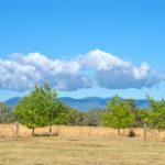 Clouds over Lake Ginninderra Gary Lum